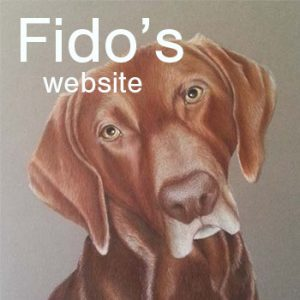 fidoswebsite